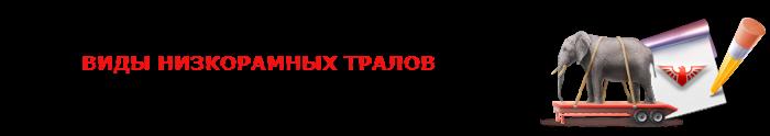 saptrans-trall-nizcoramnik-russia-024