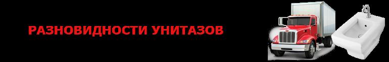 original_bide_89257557224_perevozka_bidde_rus_saptrans_bi_11