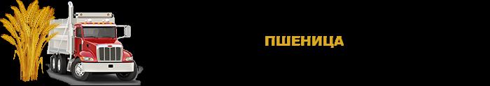 selhozprodukciua_saptrans-online-ru_perevozka_rus_sng_9257557224_004