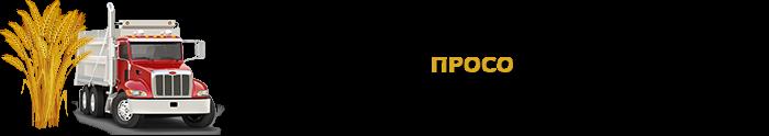 selhozprodukciua_saptrans-online-ru_perevozka_rus_sng_9257557224_008