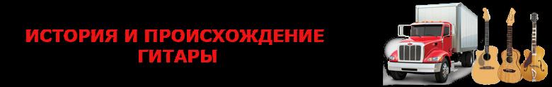 original_perevozka_gitaru_avto_2008_9257557224_saptrans_rus_vip_gitara_002