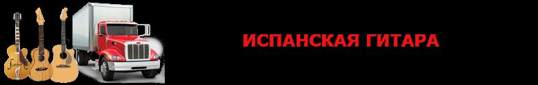 original_perevozka_gitaru_avto_2008_9257557224_saptrans_rus_vip_gitara_003