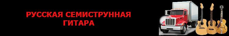 original_perevozka_gitaru_avto_2008_9257557224_saptrans_rus_vip_gitara_004