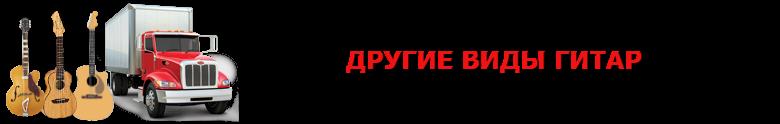 original_perevozka_gitaru_avto_2008_9257557224_saptrans_rus_vip_gitara_007